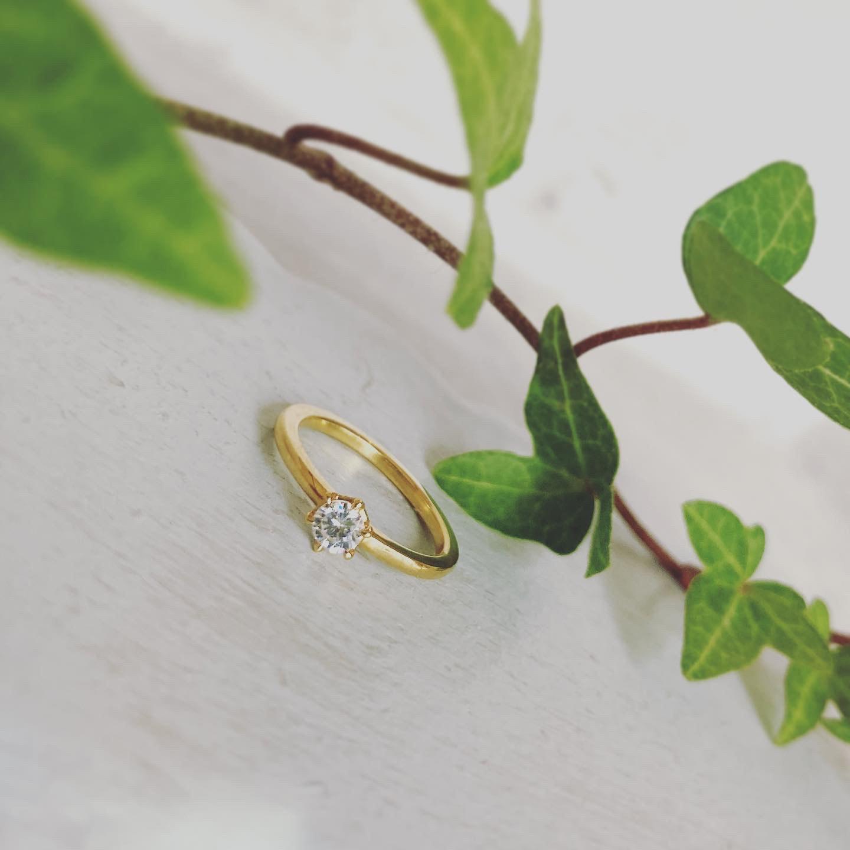婚約指輪〈Naturae no3〉のご紹介